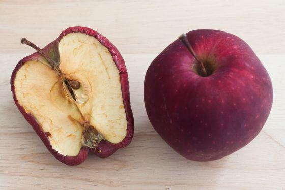 Muszki owocówki – jak pozbyć się owocówek z kuchni? Domowe sposoby