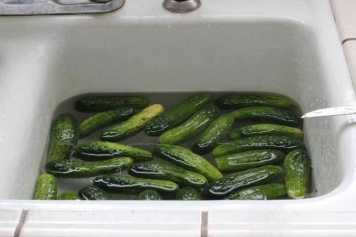 My miserable youth was filled with this cucumber dish