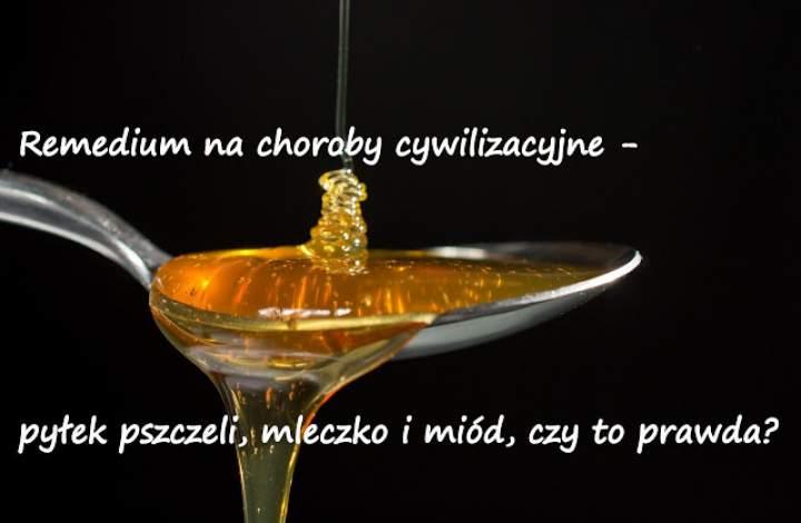 Remedium na choroby cywilizacyjne – pyłek pszczeli, mleczko i miód, czy to prawda?