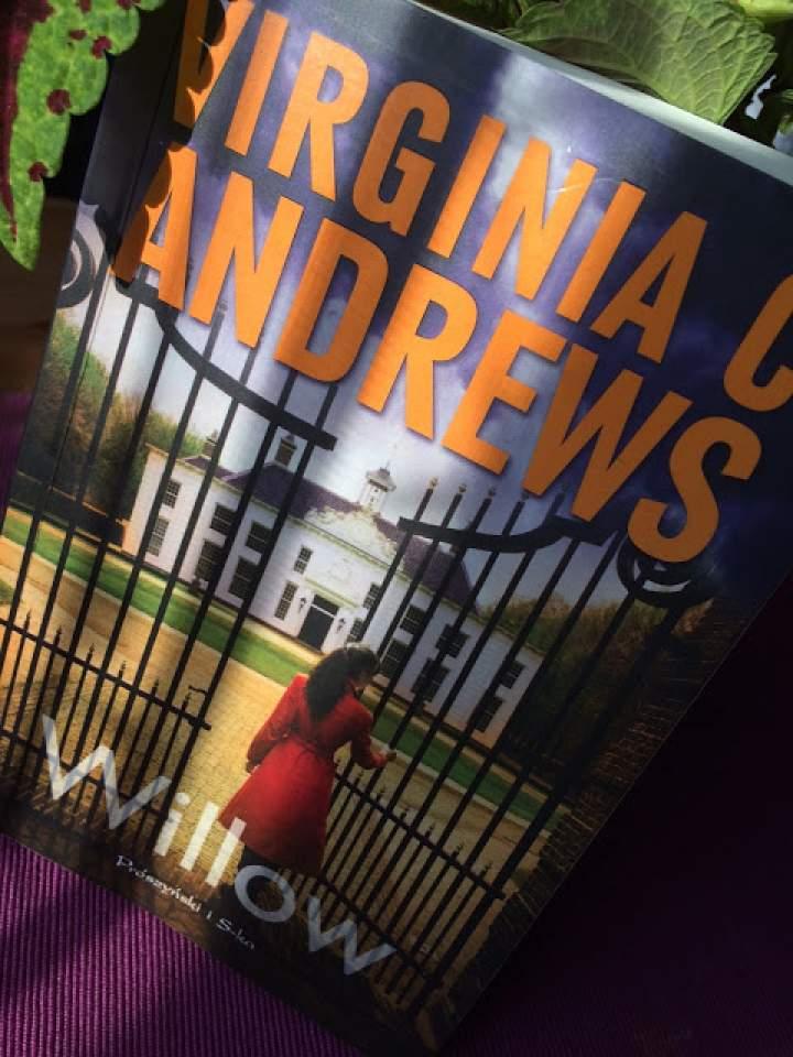 """""""Willow"""" – recenzja książki"""