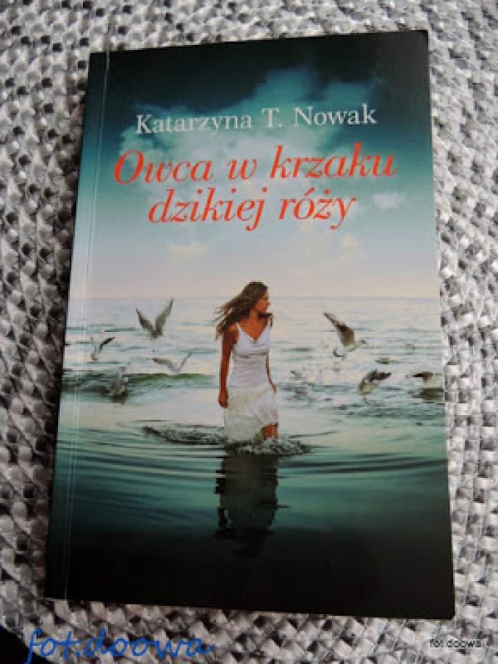"""""""Owca w krzaku dzikiej róży"""" Katarzyna T. Nowak – recenzja książki"""