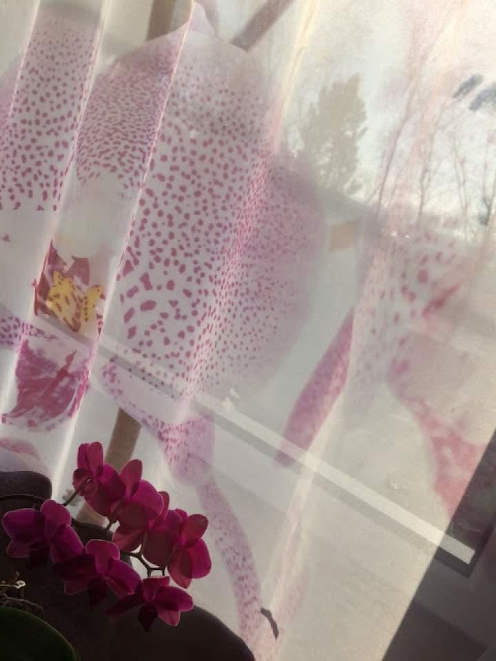 Świeży powiew wiosny w oknie – Tekstylialand
