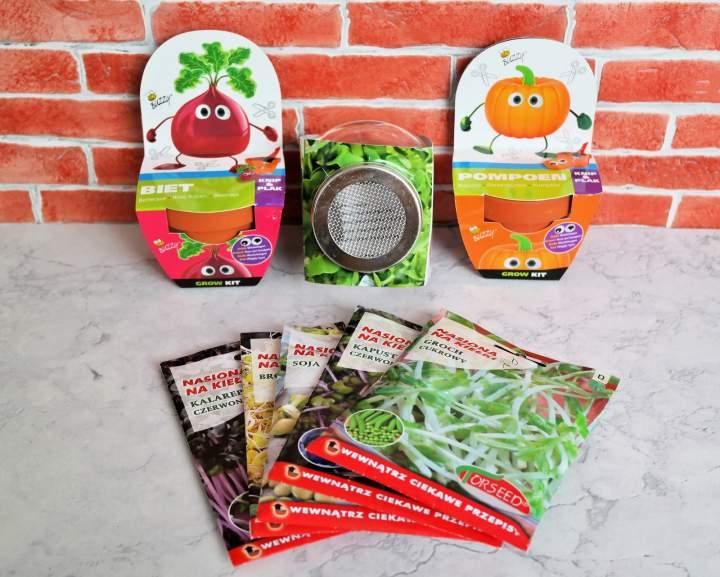 Dzieci hodują rośliny – świetna edukacyjna zabawa