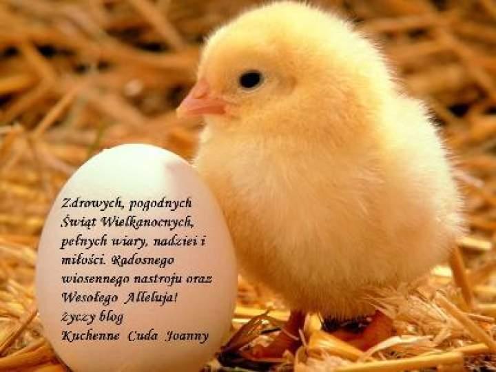 Wesołych Świąt Wielkanocnych !!!