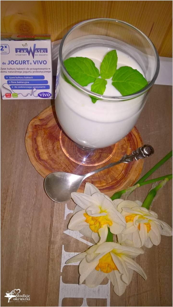 Jak zrobić klasyczny domowy jogurt?