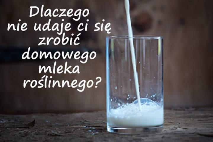 Dlaczego wciąż nie udaje ci się zrobić domowego mleka roślinnego?