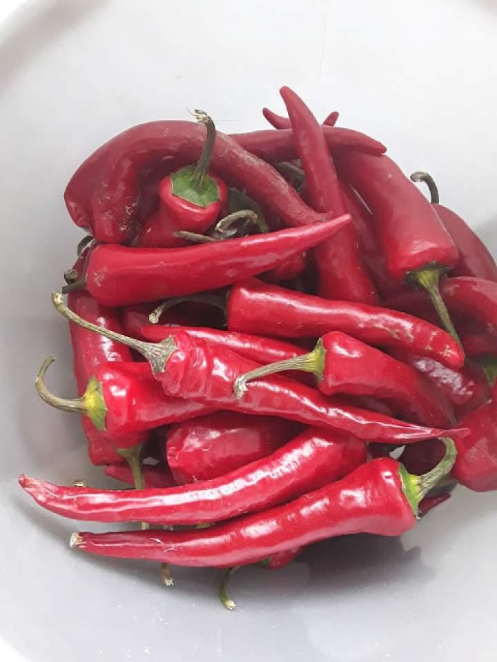 Papryczka chilli marynowana