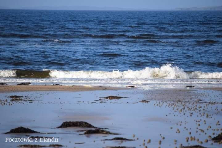 Murvagh Beach jesienią