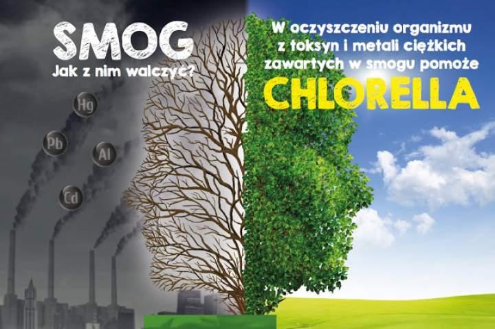 Chlorella w walce ze smogiem