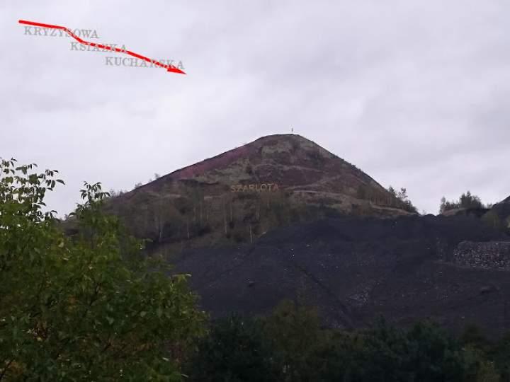 Poleśniki ziemniaczane na górze Szarlocie