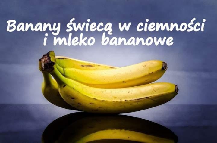 Banany świecą w ciemności i mleko bananowe