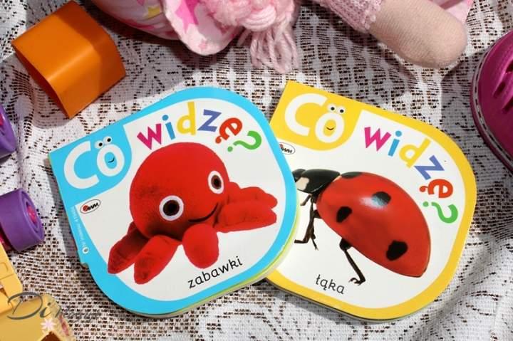 Zabawki i Łąka, czyli książeczki dla najmłodzych z serii Co widzę? – recenzja