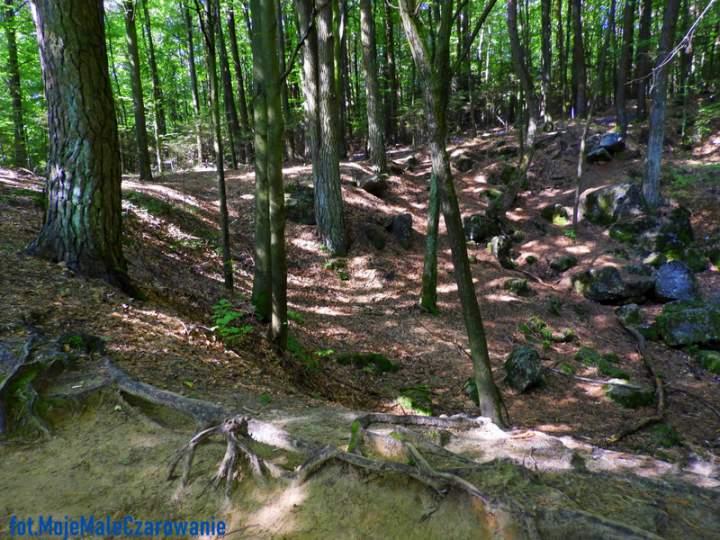 """Jaskinia """"Raj"""" i Centrum Neandertalczyka w Chęcinach"""