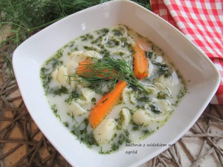 Zupa koperkowa.