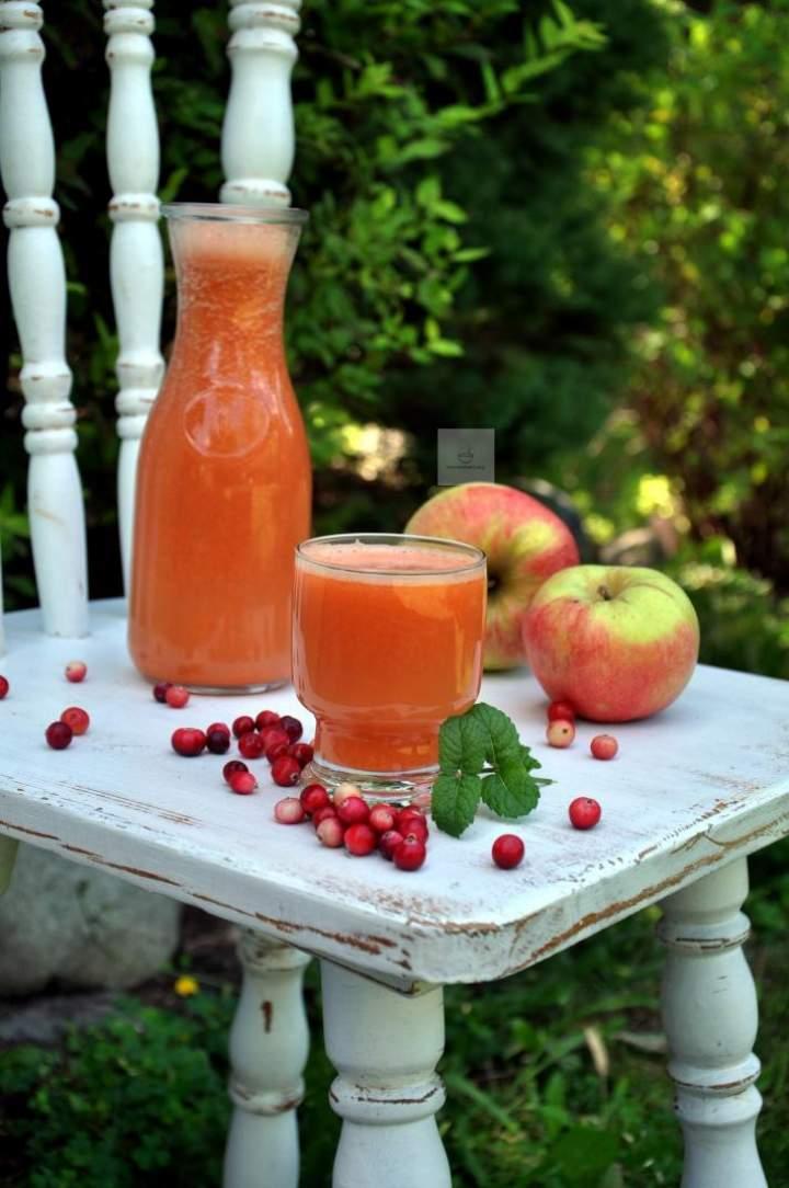 Świeży jesienny sok z dyni i żurawiny
