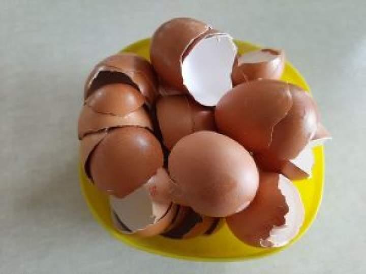 Jak wykorzystać skorupki jajek?