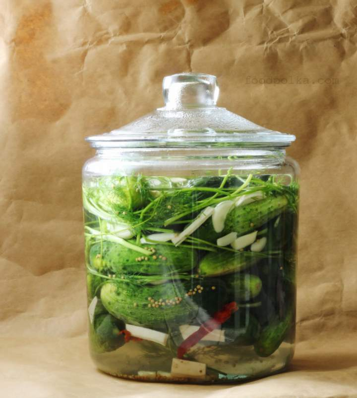 Naturally fermented, lightly salty dill pickles