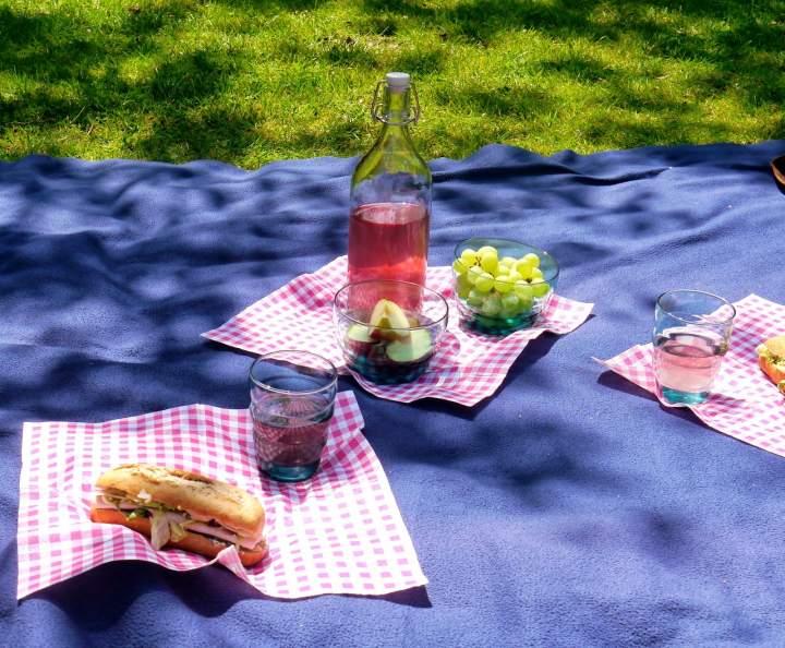 Piknik Majowy – Wyzwanie blogerek i  blogerów