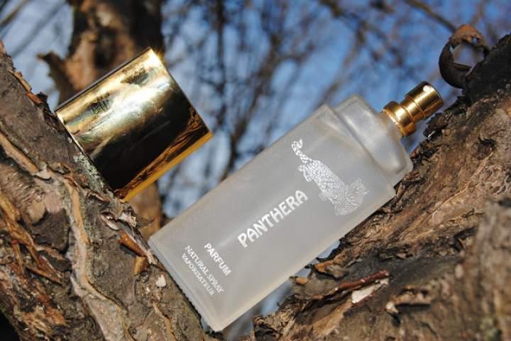 Drapieżny zapach? Perfumy Panthera