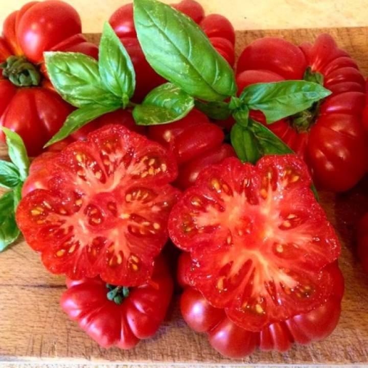 Pomidor czy wiesz że ?